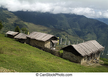 Bhutan, home in traditional architecture with bamboo leaves on roofing