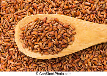 Bhutanese Red Rice seed. Grains in wooden spoon. Close up.