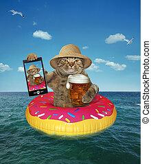 bière, marques, selfie, chat