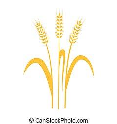 bière, oreilles, graphique, blé, seigle, icônes, conditionnement, étiquettes, etc, idéal, vecteur, orge, pain, ou, visuel