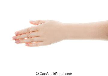 białe tło, odizolowany, samicza ręka