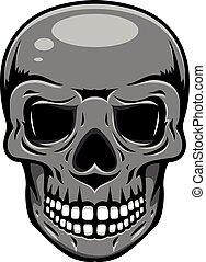 biały, czarnoskóry, ludzka czaszka