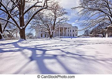 biały dom, drzewa, po, śnieg, pensylwania, ave, waszyngton...