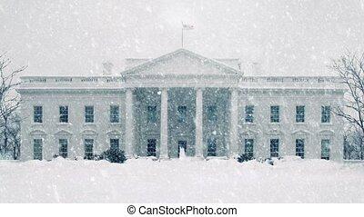 biały dom, w, śnieżyca