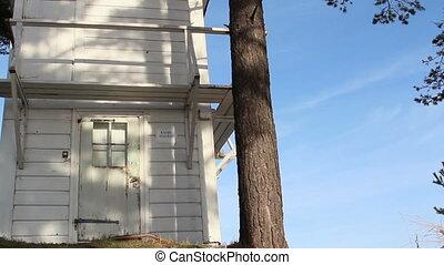 biały dom, w, dwa, drzewa