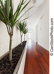 biały, korytarz, w, dom