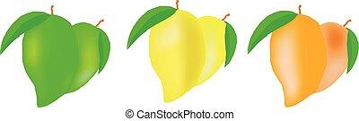 biały, mangowiec, komplet, tło