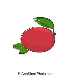 biały, mangowiec, odizolowany, czerwony