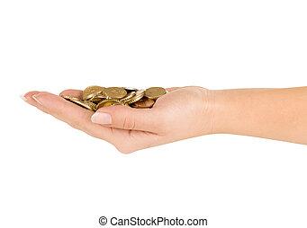 biały, monety, tło, ręka