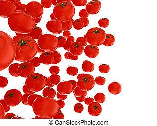 biały, odizolowany, pomidory