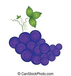 biały, odizolowany, winogrona