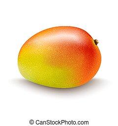 biały, owoc, odizolowany, tło, mangowiec
