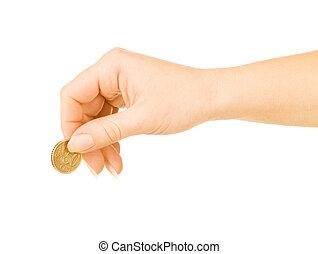 biały, pieniądz, tło, ręka