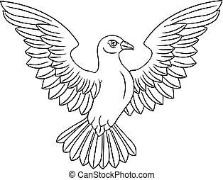 biały, pojęcie, gołębica
