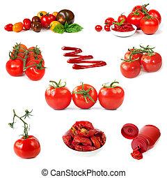biały, pomidory, zbiór, odizolowany