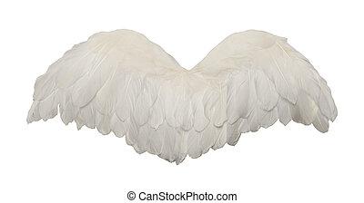 biały ptaszek, skrzydełka