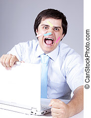 biały, szef, laptop., młody