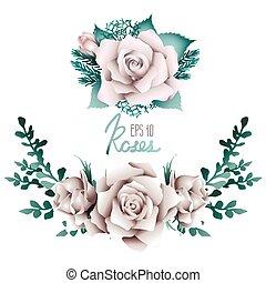 biały, winieta, zbiór, róże