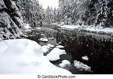 biały, zima krajobraz