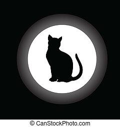 bianco, cerchio nero, gatto