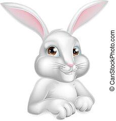 bianco, coniglietto pasqua, coniglio