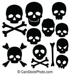 bianco, crani, isolato, collezione