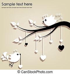 bianco, due, ramo, uccelli