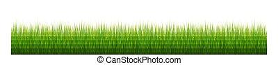 bianco, erba, bordo, fondo