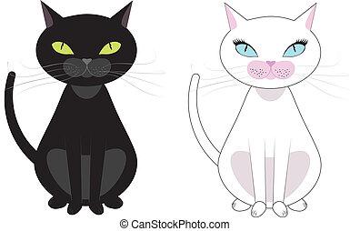 bianco, gatti, nero