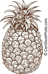 bianco, incisione, indietro, ananas