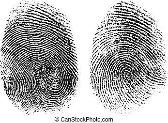 bianco, isolato, illustrazione, vettore, impronte digitali