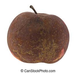 bianco, mela, isolato, marcio, fondo