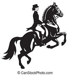 bianco, nero, cavaliere, dressage
