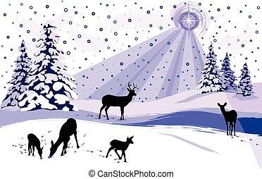 bianco, nevoso, scena inverno, con, cervo