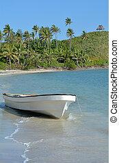 bianco, peschereccio, su, uno, isola tropicale, figi
