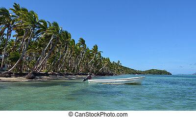 bianco, peschereccio, su, uno, isola tropicale, in, figi