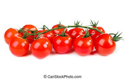 bianco, pomodori, fondo
