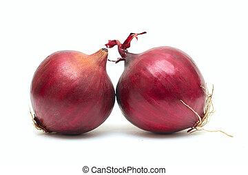 bianco rosso, cipolla
