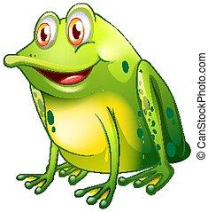 bianco, sfondo verde, rana, seduta
