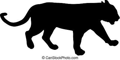 bianco, silhouette, fondo, leonessa