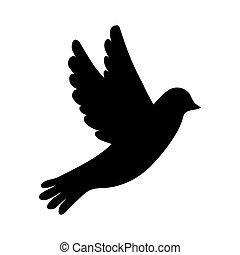 bianco, silhouette, uccello, fondo