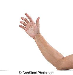 bianco, uomo, isolato, fondo, mano