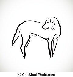 bianco, vettore, cane, fondo