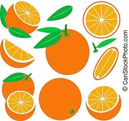 bianco, vettore, set, fondo., arancia, isolato