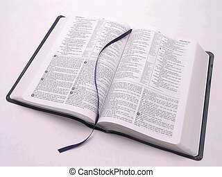 bibbia aperta, libro, 2