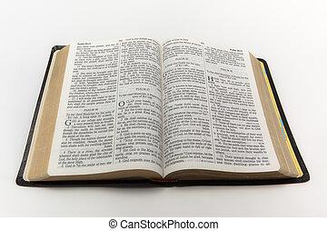bibbia, aperto