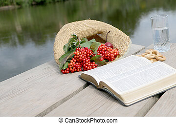 bibbia, viburnum, bacche rosse