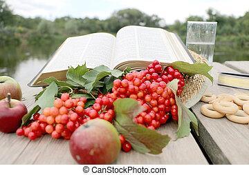 bibbia, viburnum, libro, bacche, rosso