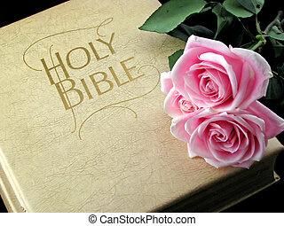 the holy bible and three pink roses