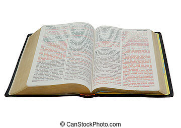 Bible Isolated on White - Photo of an open Holy Bible
